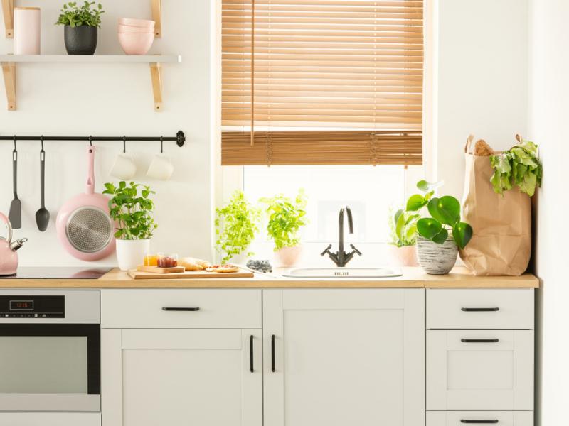 An eco-friendly kitchen
